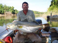 Catch Barramundi on a Barramundi Fishing Charter on the Daly River, Woolianna Rd