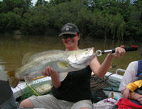 How to catch a Barramundi on the Daly River